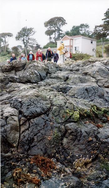 Pillow lavas at Helens Bay