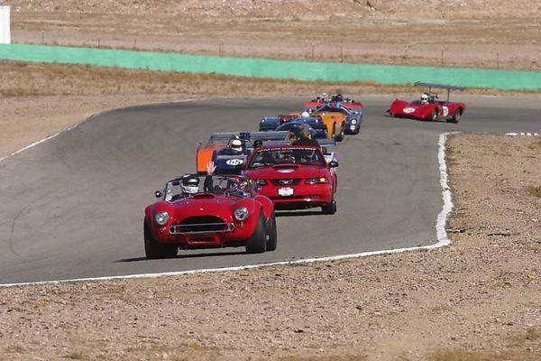 No-0333 Race Group 7