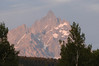208 Grand Teton Nat'l Park, Wy - sunrise