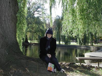 sarah_park_willow