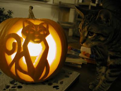 wiely_pumpkin