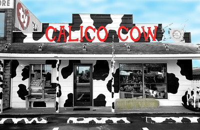 Hand painted black and white of gift shop in Branson, MO.