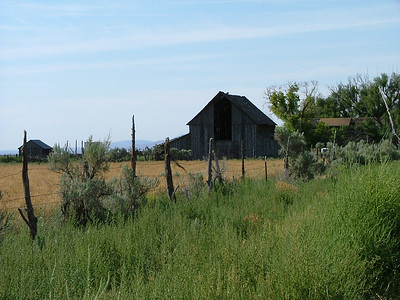 Barn in Rush Valley