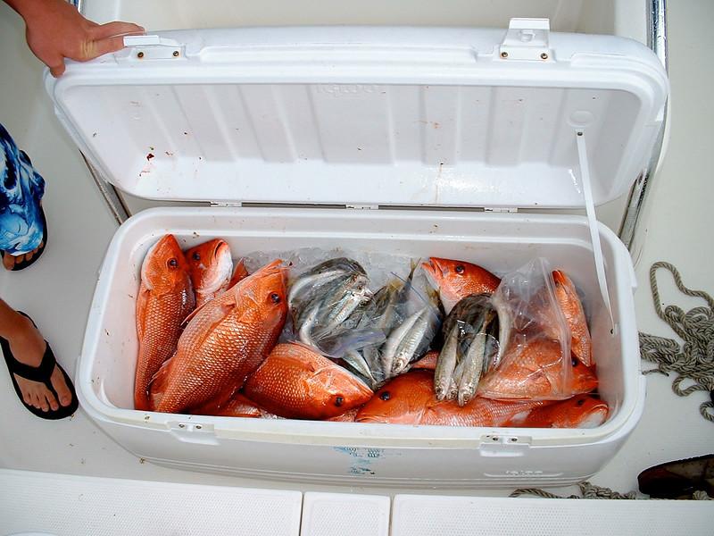 fishing1_003
