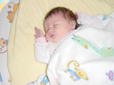 Lily-Newborn