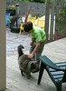 Benjamin petting cat at B&B
