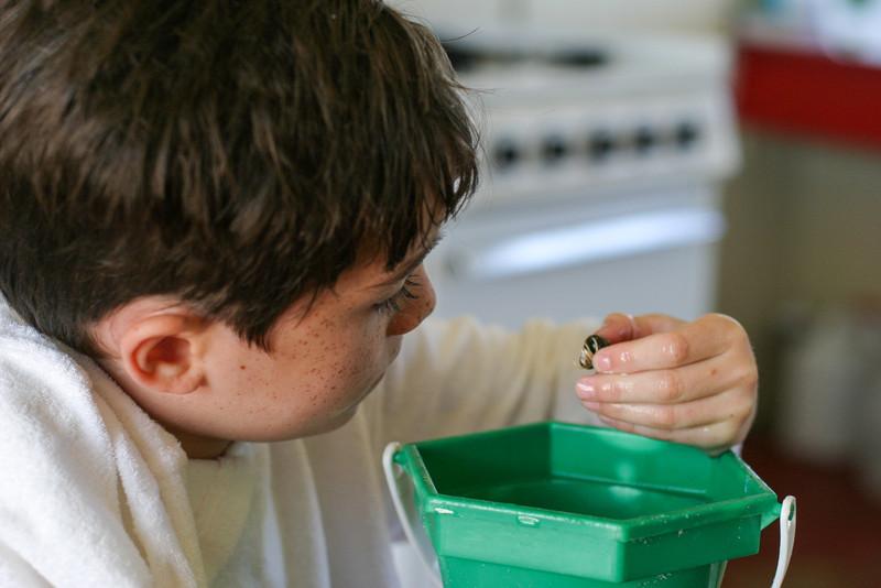 Benjamin examining a shell