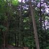 West Rim Trail / Gorge Trail