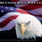 Freedom_Will_Prevail