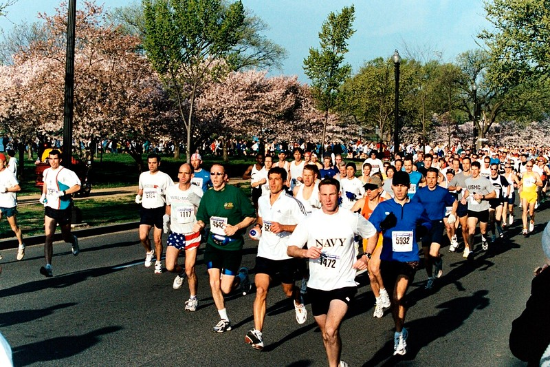 2003 Credit Union Cherry Blossom