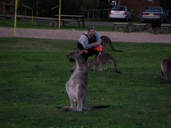 2003Australia14