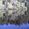 2003Australia63