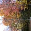 2003NewEnglandFoliage24