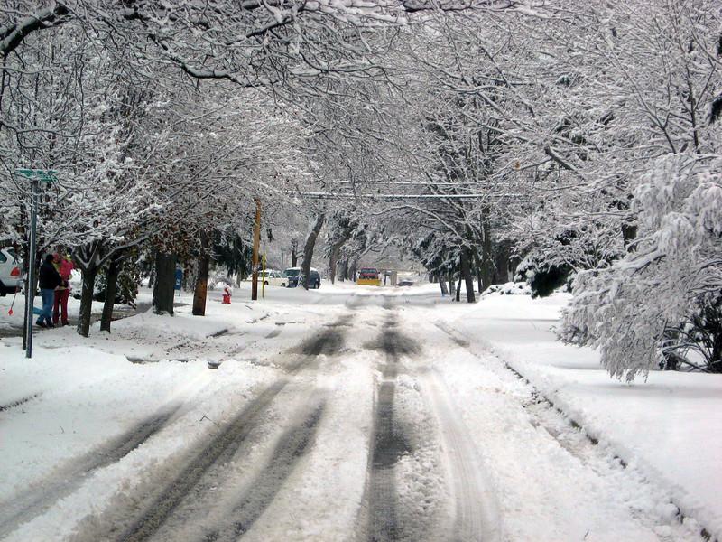 Snowy Boulevard
