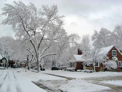 New Year's Snow