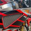 Honda RC51 Nicky Hayden -  (11)
