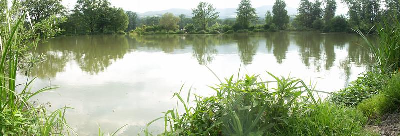 2004-07-01 Fischen in Pöllau