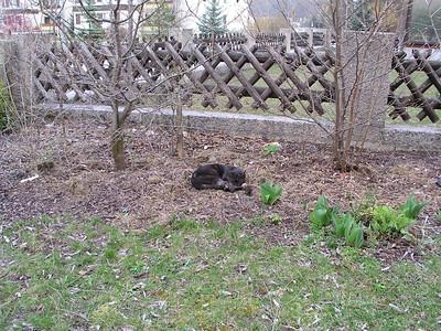2004-04-30 Garten