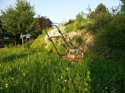 2004-06-07 Garten