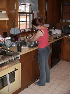 Ahh, barefoot in the kitchen doing the dishes. Everything is as it should be.