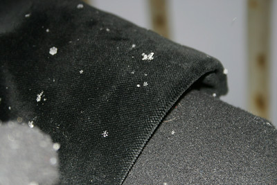 I never knew snowflakes were visible to the naked eye