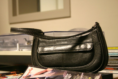 The purse waits patiently