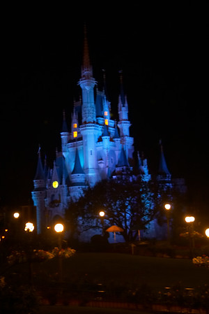 Cinderella's castle (this is the first time the building has been photographed ever)