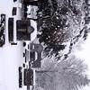 Fredonia Cemetery 3