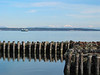 View across the water, near Port Townsend