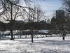 Boston Common, skating at Frog Pond