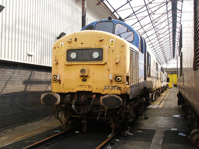 37372 at Motherwell TMD  12/06/07.