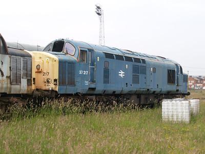37217 at Ayr TMD  12/06/07.