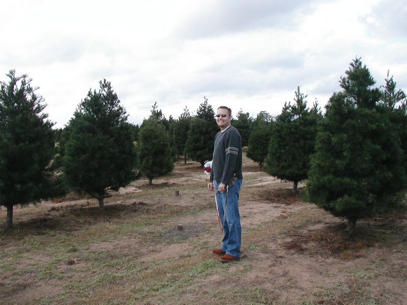We went searching for our perfect Christmas tree....