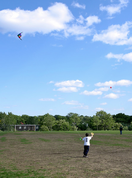 Kites over Danehy Park