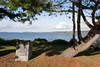 View of Puget Sound from Buena Vista cemetery