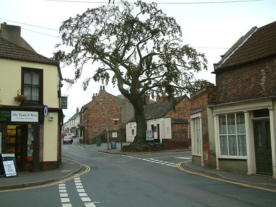 The cooper beech tree at the junction of Chapel Street and High Street in Epworth which is to be felled and replaced.