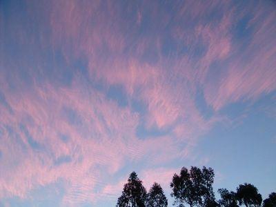 November: Sunrise Skies