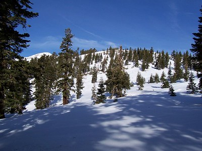 Way off route, but at least out of the brush.  Pyramid Peak can be seen poking out on the left.