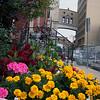 City Garden #2