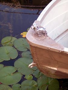 Bulldog Boat