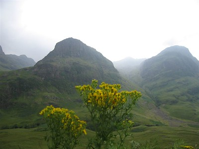Flowers and Glen Coe