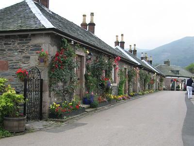 Bonnie Flowers at Loch Lomond