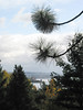 Gardener's Outlook, with a wonderful view over Lake Washington