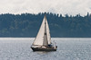 A sailboat on Puget Sound