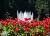 A fountain among the flowers at Butchart Gardens