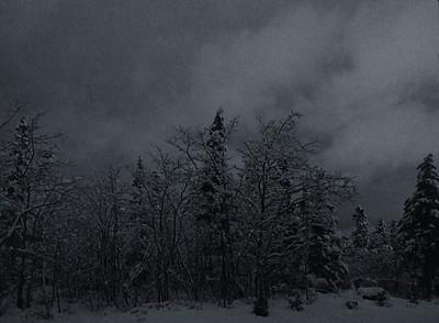 Snow Storm  Dec.4, 2006.