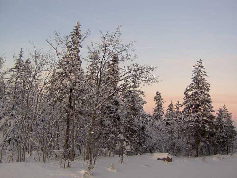 Dawn after the storm (Dec. 2005).