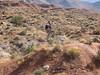 20051022154-OTB Utah-Flying Monkey-(Shawn-IMG_4893)