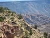 20051022055-OTB Utah-Flying Monkey-(Hans-IMG_0328)