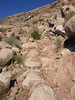 20051022095-OTB Utah-Flying Monkey-(Steve-IMG_7308)